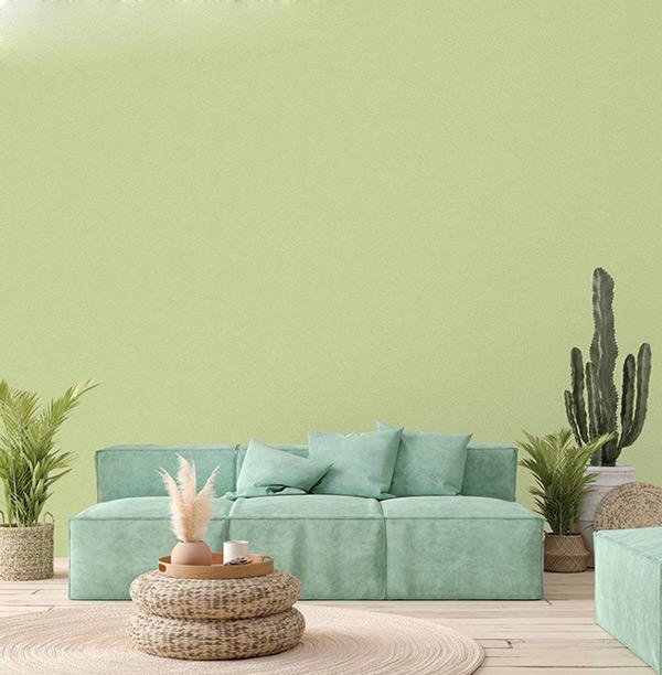 Màu xanh tự nhiên nhiên mang đến cảm giác thoải mái, dễ chịu